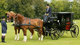 Horses and Glass Landau Coach wedding car for hire in Dorchester, Dorset