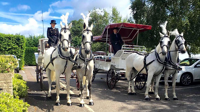 Horse Drawn Carriage Selection wedding car for hire in Gravesend, Kent