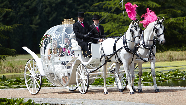 Cinderella Horse Drawn Carriage Hire