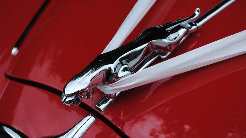 Jaguar MK II 3.8 Litre wedding car for hire in Usk, South Wales